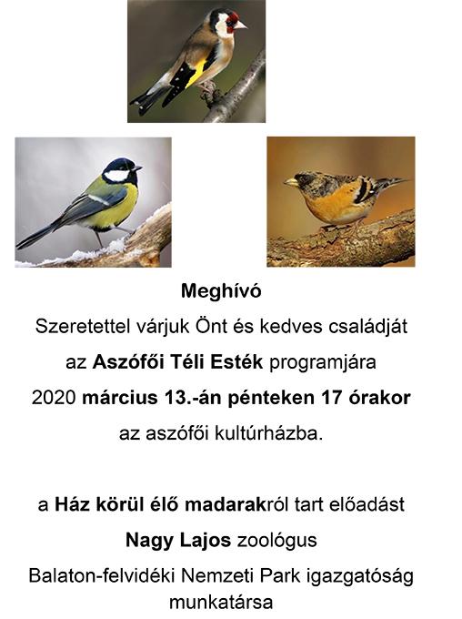 Ház körül élő madarak